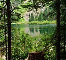 Mckay Lake through the trees 2 by Michael Garson