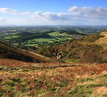 Malvern Hills: The Shire by Angie Latham