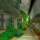 The Alley in Bloom by Jamie  Green