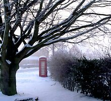 Tree and Phone - Seaton Ross by charlylou