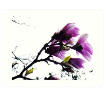 Purple Bower Art Print