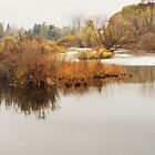 Huron River in November by enchantedImages