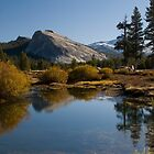 Tuolumne Meadows Yosemitie by Barbara Schmaeling