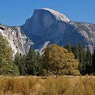 Half Dome Fall by Barbara Schmaeling