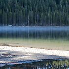 Tenaya Lake Yosemitie by Barbara Schmaeling