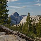 Half Dome from Olmsted Point by Barbara Schmaeling