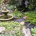 Fountain in the Garden by Sandra Gray