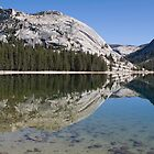 Tenaya Reflections by Barbara Schmaeling
