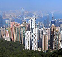 Welcome to Hong Kong by Wayne Holman