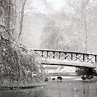 Bridge In The Snow by Mat Robinson