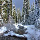 Winter Stream by Joe Powell