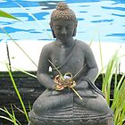 Buddha by pool. by Amanda Gazidis
