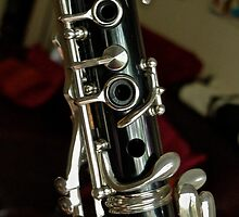 Bb Clarinet ... Old Friend by Scott Johnson