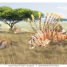 Ocean Invasion #9: Lionfish 1, Springbok 0 by Daniel Brown
