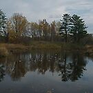 Late Fall Mill Pond, Dorchester Ontario, Canada by creativegenious