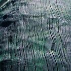 Green Wood by Catherine Davis