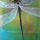 Dragonfly - card by Margo Humphries