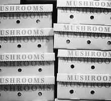 Mushroomed by reflexio