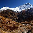 Machhupuchhare, Annapurna, Nepal. by Andy Newman