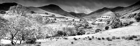 Newlands Valley (2), Cumbria, England by Bob Culshaw
