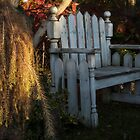 November Bench by enchantedImages
