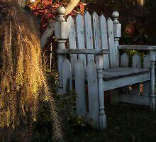 November Bench by enchantedImages