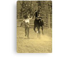 Two For The Show Canvas Print