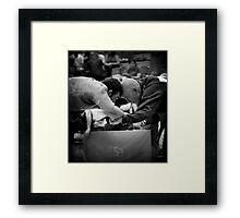 Murat Karadenizli x Angus Friend Framed Print