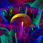 Physcedelic Mushrooms by Virginia N. Fred