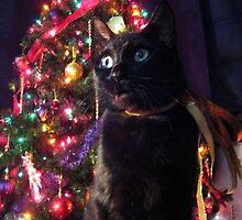Merry Catmas! by hallucingenic
