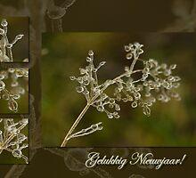 Schoonheid van kristal - Gelukkig Nieuwjaar by steppeland-2