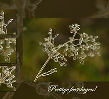Schoonheid van kristal - Prettige Feestdagen by steppeland-2