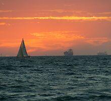 Sunset at Port Phillip Bay by Maksym Hlushko