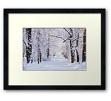 Warsaw Winter Wonderland 4 Framed Print