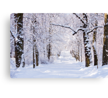 Warsaw Winter Wonderland 4 Canvas Print