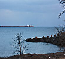 Great Lakes Shipping by by M LaCroix