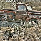 Old Farm Truck on a Texas back road by Susan Russell