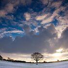 Midwinter Sun by Andrew Leighton