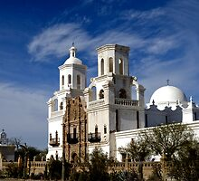 San Xavier Mission - The White Dove by Angela Pritchard