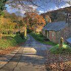 Cornish Autumn by M G  Pettett
