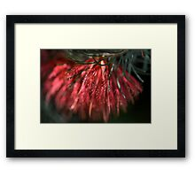 Soft Brush Framed Print