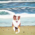 Surfs Up ~ Australian Shepherd by Barbara Applegate