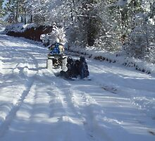 A Gaston, South Carolina Snow Ride by Karen L Ramsey