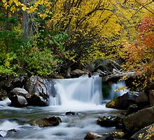 Autumn Waterfall by Ken Fortie