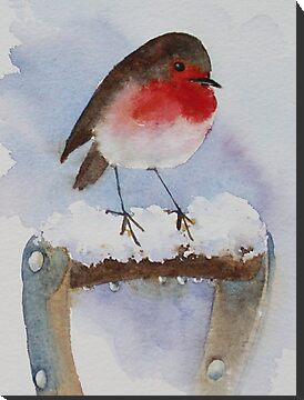 Winter robin  by Ann Mortimer