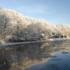 River Tweed Winter Reflections, Peebles by rosie320d
