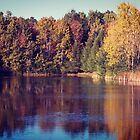 Golden Pond by mikebone