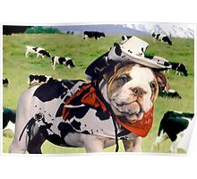 """""""Cow Dog"""" - An English Bulldog wants to be a Cow Dog. Poster"""