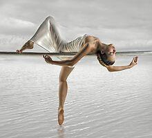SWAN LAKE by jamari  lior