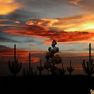 Desert Saguaro Sunset by Winona Sharp